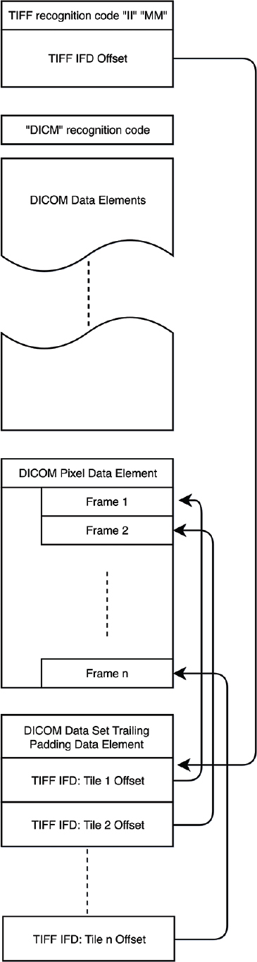 Dual-Personality DICOM-TIFF for whole slide images: A